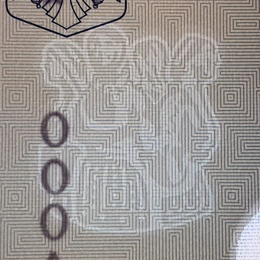Imprimeria BNR - Imprimate securizate - Filigran